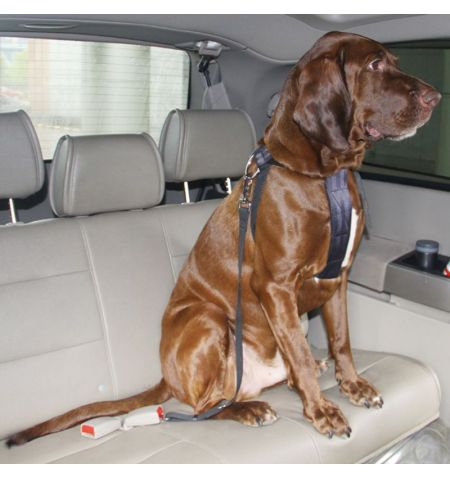 Bezpečnostní pás popruh do auta vesta pro psa - velikost XL